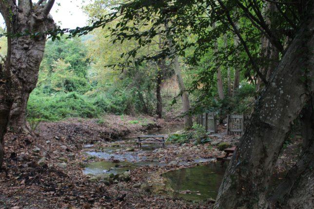 Cevizli Bahçe Kamp Alanı